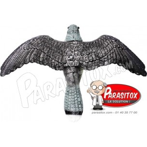 http://www.parasitox.com/64-thickbox_default/anti-pigeon-synthetique-72.jpg